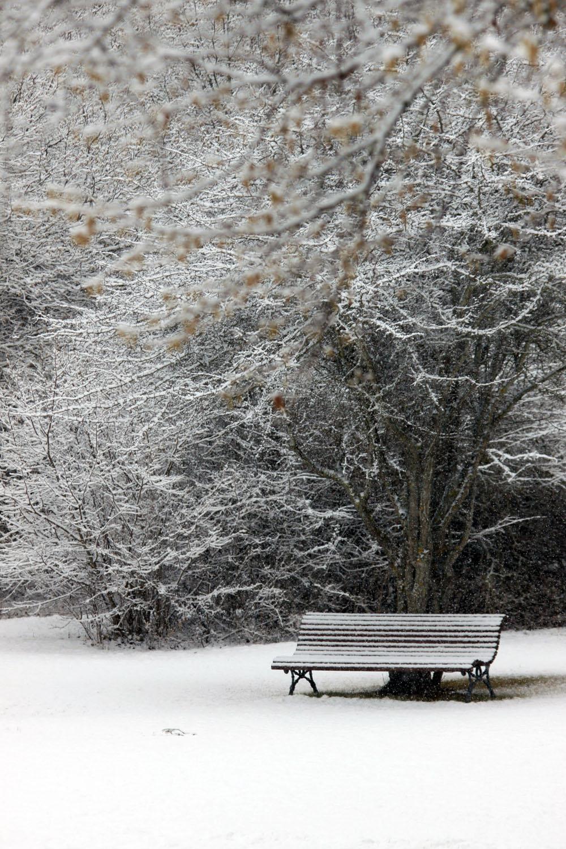 L'hivern a les altures terolenques (©Carles Terès)